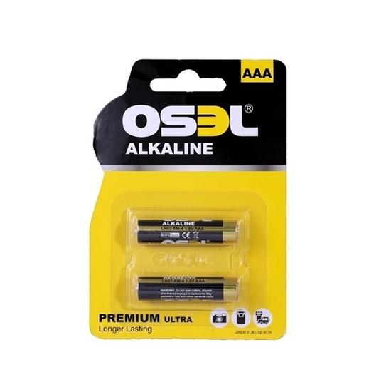 باتری نیم قلمی آلکالاین بسته دو عددی